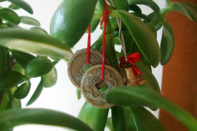 Как работает амулет на удачу и богатство