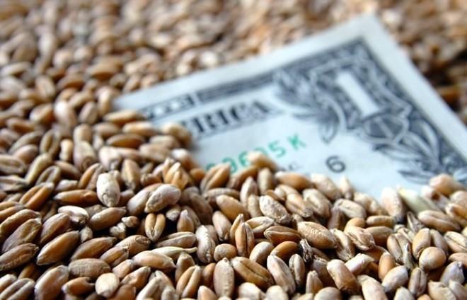 деньги и зерно