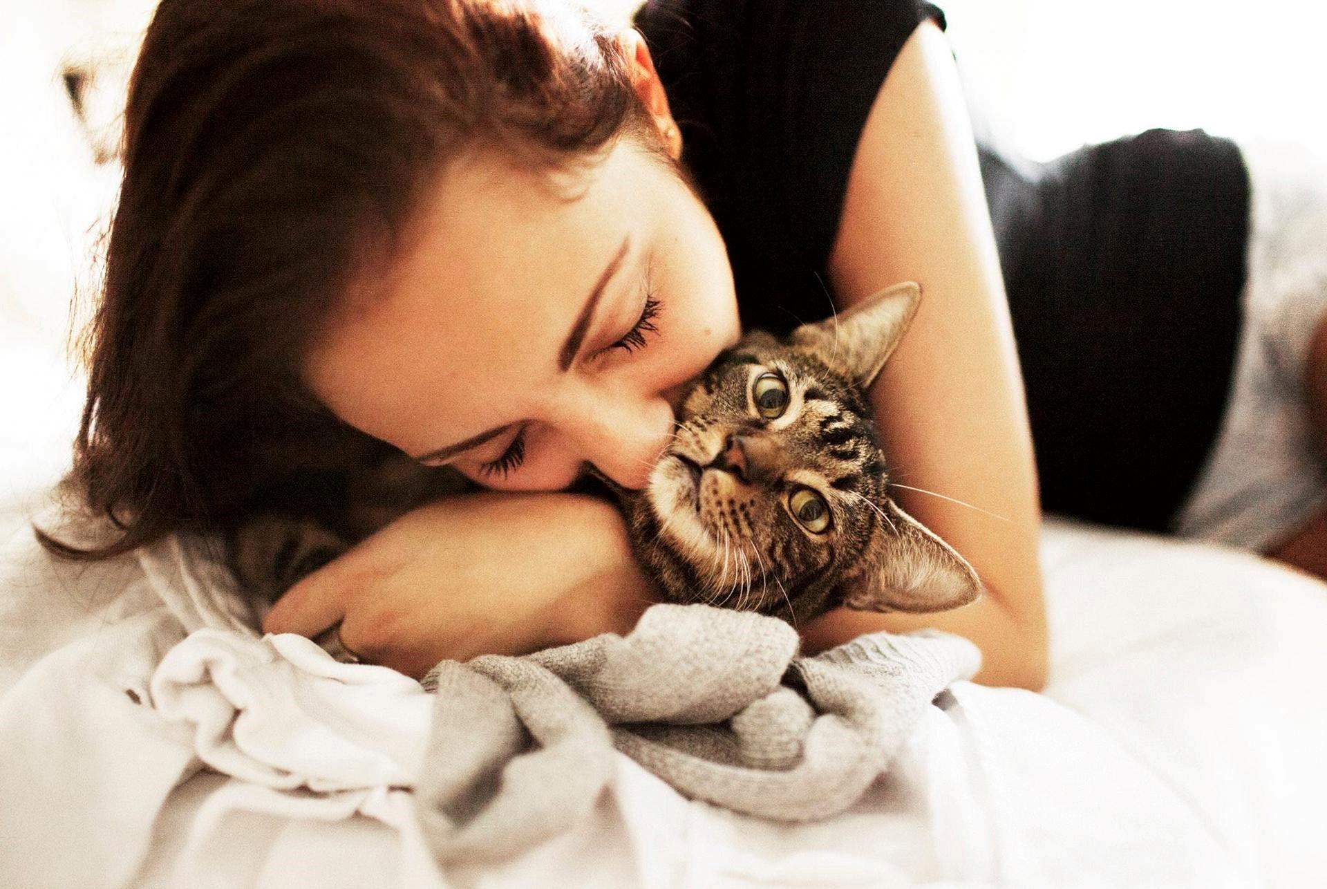 Обнимать кота картинка