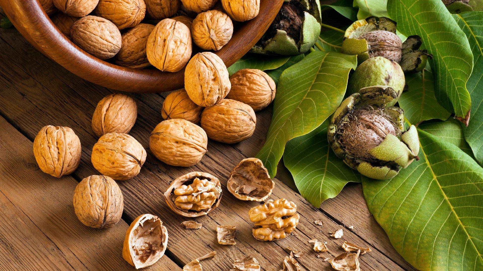 грецкие орехи ядра макро анонимно