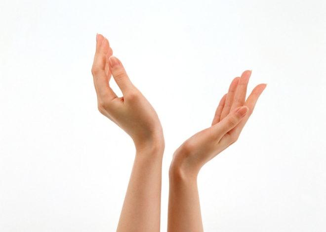 кисти рук