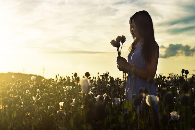 девушка в поле с цветами