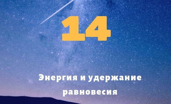 число 14