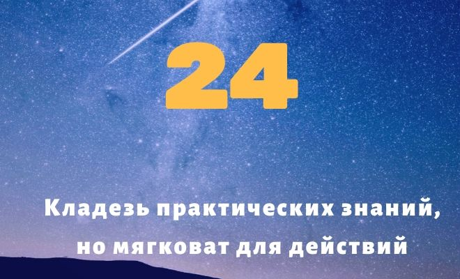 число 24