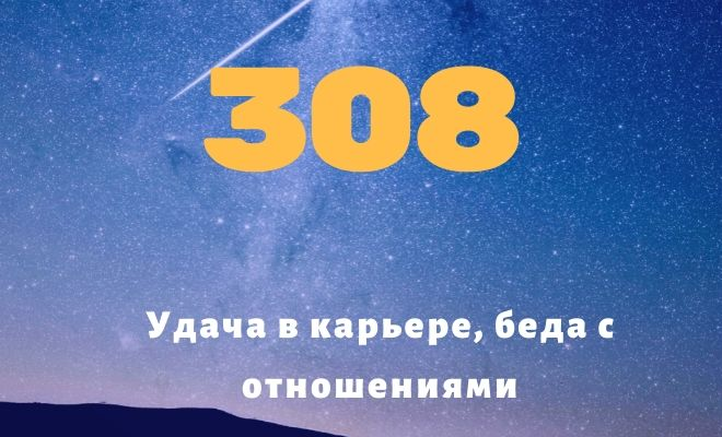 число 308