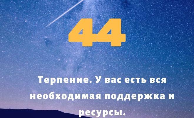 число 44