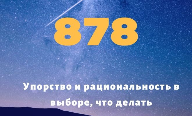 число 878