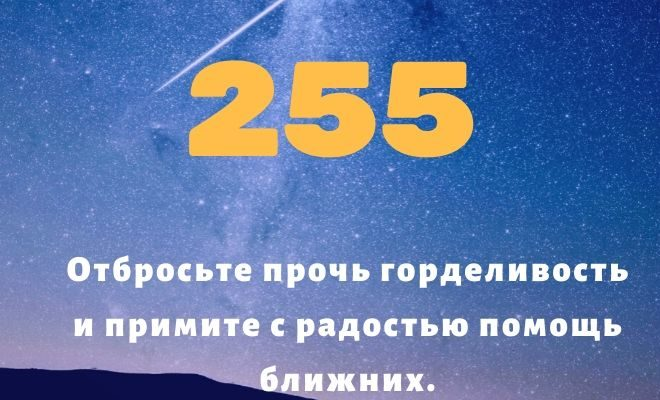 число 255