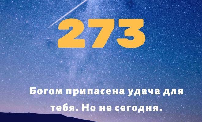число 273
