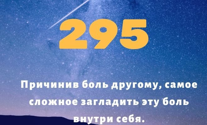 число 295