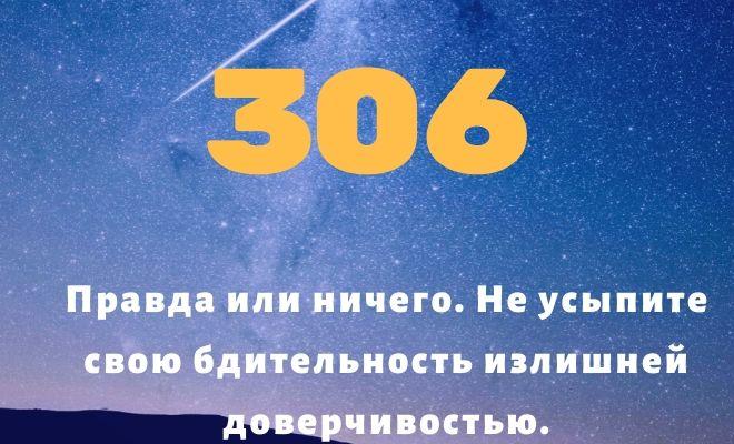 число 306