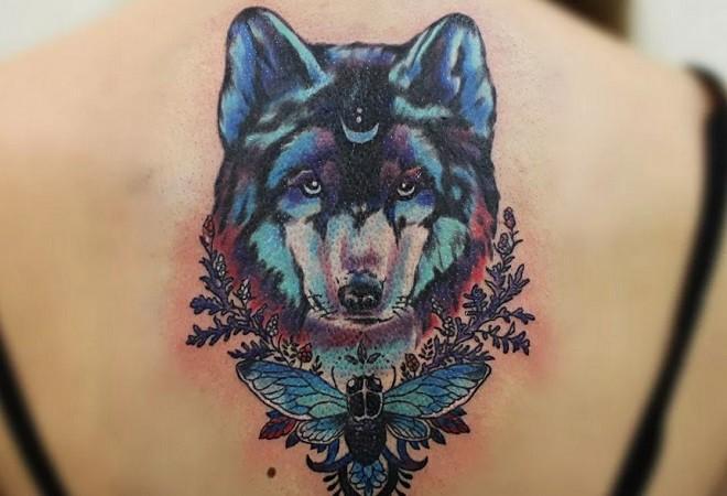 тату волка применение