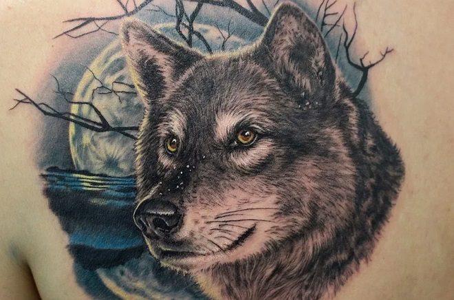 тату волка свойства